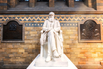 Sir Charles Darwin statue at the Natural History Museum in London, UK