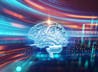 Wall Mural - 3d rendering of human  brain on technology background