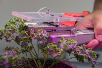 co2 measuring device for measuring photosynthesis of plant growing with artificial led light