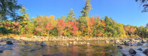Creek and trees in New England in foliage season, panoramic view