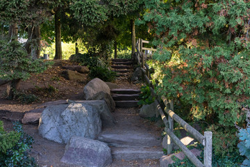 stone stairs in park with tree and wooden handrail