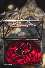 Rings on rose petals inside of handmade forged metal and glass transparent box