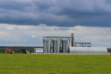 Elevator, modern grain dryer on the edge of a green field in summer in the village against the cloudy sky - agriculture, farm, farming, harvesting grain