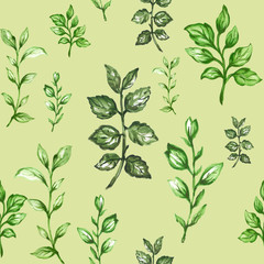 Botanical pattern of green branches and leaves floral Design