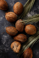 Coconuts on a dark background.