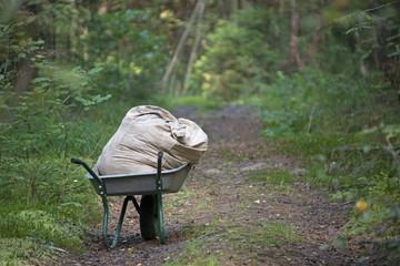 Wheelbarrow with a bag in the summer wood