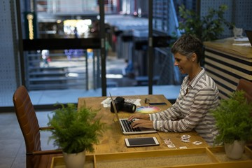 Mature businesswoman using laptop at desk