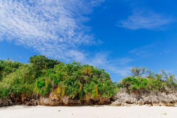 White beach landscape of the Coral Coast of Fiji