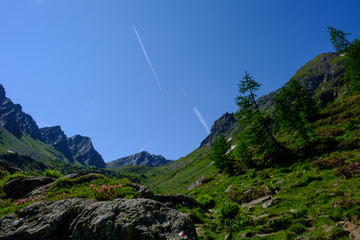 Alpi Svizzere Pizzo Cristallina