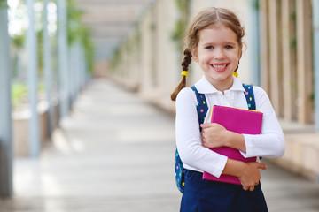 child girl schoolgirl elementary school student.