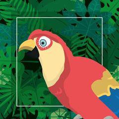 Exotic bird cartoon