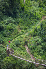 Man walking across suspension bridge in lush and green forest in the Annapurna Conservation, Nepal.