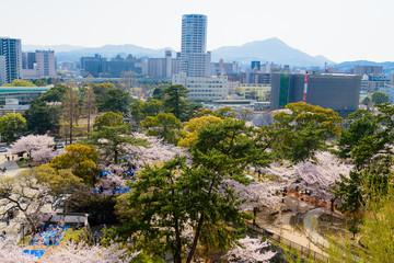 春の小倉城と小倉城からの眺め