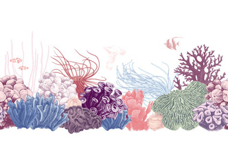 Hand drawn colorful coral reef border