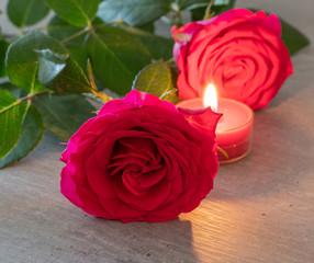Rote Rosen Mit Kerze Auf Neutralem Hintergrund