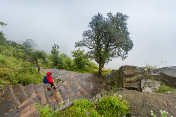 Woman in red rain jacket trekking down stone stairs in the rainy Annapurna conservation of Nepal.