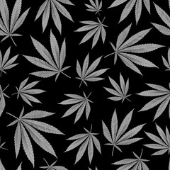 texture for design wallpaper. grey leaves on black background. Cannabis Marijuana Weed Seamless Pattern