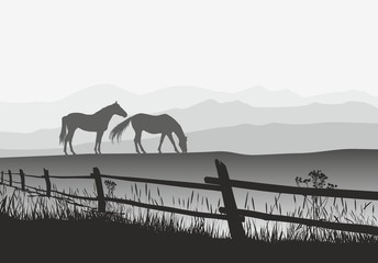 Two horses on meadow with fence