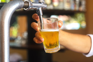 Hands of a bartender holding a glass of beer