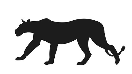 lioness silhouette, vector,