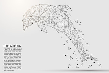 Abstract Dolphin consisting of 3D triangles, lines, points and links. Vector illustration of EPS 10.