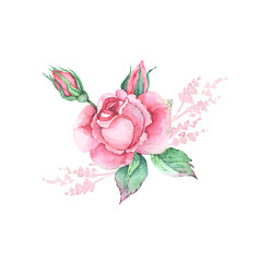 set of watercolor drawings of rose flowers with leaves, buds and decorative elements