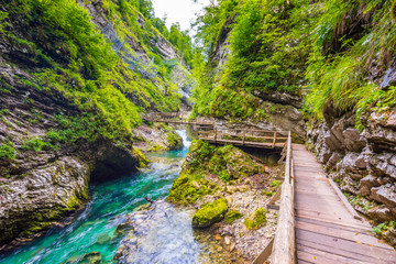 Vintgar gorge, Slovenia. The Radovna river with wooden paths and bridge above. Beautiful water river in Triglav national park. Waterfall, forest and fresh nature vegetaion. Tourist paths and hiking.