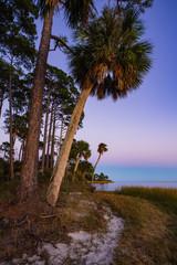 Apalachicola Bay coast off US Highway 98 near Nine Mile, Apalachicola, Florida