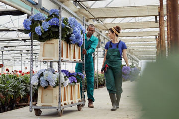Gardeners Discussing While Walking With Trolley At Greenhouse