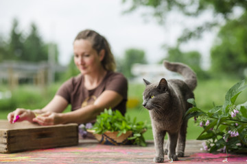 Woman putting rose petals in wooden frame while cat standing in foreground at farm