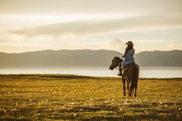 cowgirl sitting on a horse on a blooming meadow