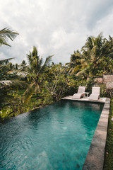 Two pool loungers next to pool set in tropical garden