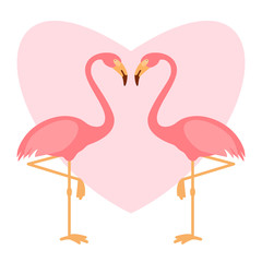 Pink flamingoes pair, love illustration, two loving birds, vector