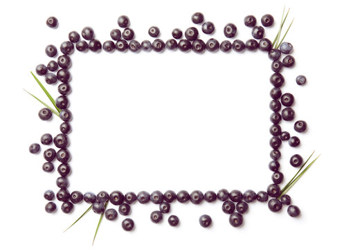 Frame made of fresh acai berries and leaves on white background