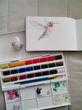 Hummingbird pencil sketch in a sketchbook, in the process of being colored in with watercolor paint