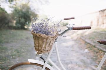 Vintage bike in nature