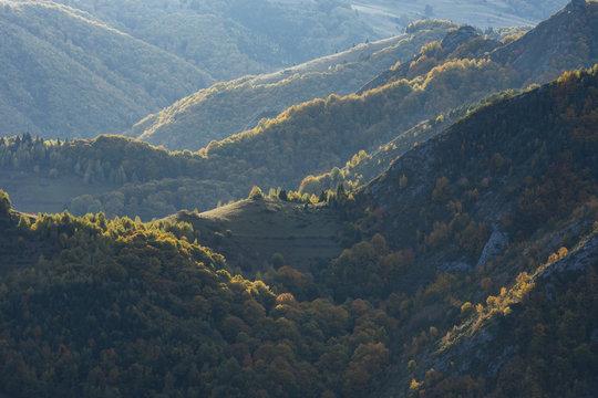 Autumn mountain forest at sunset