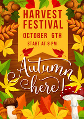 Fall festival and autumn harvest fest invitation