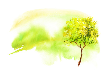Watercolor Autumn landscape.yellow, green, orange tree on a bright green grass. On a white background. Watercolor splash of paint, beautiful illustration. Nature, tree, bush, silhouette of the forest.