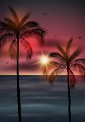 Palm tree leaves on summer background. Palm tree silhouette