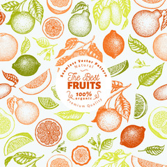 Citrus fruits seamless pattern. Hand drawn vector fruit illustration. Engraved style. Vintage citrus background.