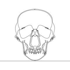 Continuous one line drawn skull X-ray vector
