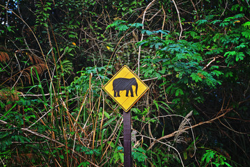 Elephant shape on the signboard in the forest, national park