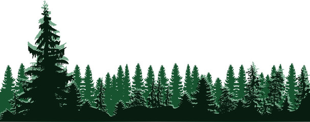 high green fir trees forest isolated on white