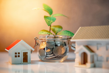 Property of real estate investment. Home mortgage loan rate. Saving money for future concept. Reflection of green plant growing out of coins in glass jar and house model on the table
