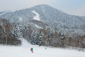 Man  play snow board at Furano snow mountain in  Hokkaido, Japan