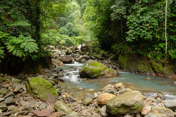 Mountain creek in canyon. Jungle river on a tropical island. Philippines, Asia