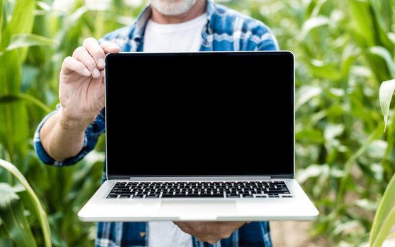 Farmer in the field showing laptop screen, closeup photo