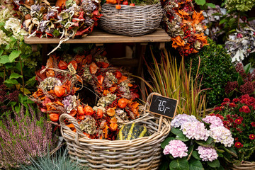 Autumn decoration at a flower shop on a street in a European city
