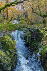 Roman Bridge at Fairy Glen, Wales, UK